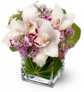 Lovely Orchids Floral Bouquet