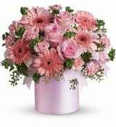 Lovely Pink Lady