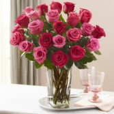Lovely Pink & Red Roses