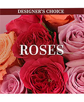 Lovely Roses Designer's Choice