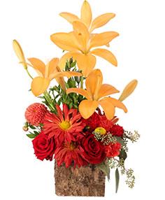 Lovely Sunshine Floral Arrangement