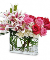 Lover's Dream All Premium Luxury Flowers