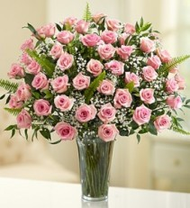 Elegance in Pink, 36 or 48 Roses Premium Pink Roses with Deluxe Foliage