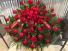 Loving memories  Red rose casket spray