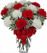 Loving Red and White Carnation Vase  Vase Arrangement