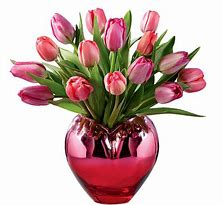 Loving Tulips Valentine Color Tulips in ombre hear