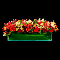 low and long seasonal flowers