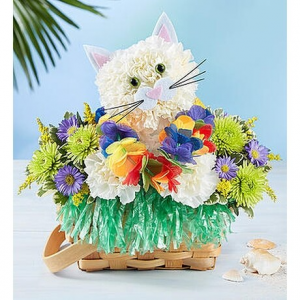 LUAU KITTY IN BASKET  in Lexington, KY | FLOWERS BY ANGIE