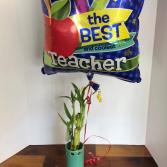 Lucky Bamboo + Mylar Balloon