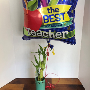 Lucky Bamboo + Mylar Balloon in Saint Louis, MO | SOUTHERN FLORAL SHOP