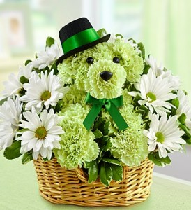 Lucky Dog! Tip O' Our Hat to Ya! in Gainesville, FL | PRANGE'S FLORIST