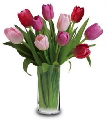 LUSCIOUS TULIPS tulip arrangement