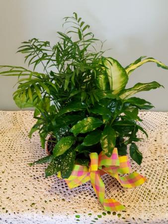 Lush Garden Basket