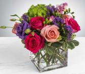LUSH GARDEN ELEGANT MIXTURE OF FLOWERS