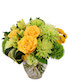 Lush Lemon Roses Flower Arrangement