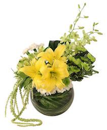 Lush Lilies & Dendrobiums Floral Design