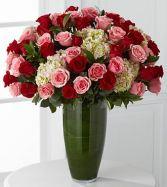 Lush Roses Roses