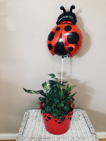 Luv bug Planter garden