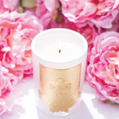 Lux Candles  Gifts