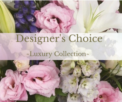Luxury Collection Designer's Choice