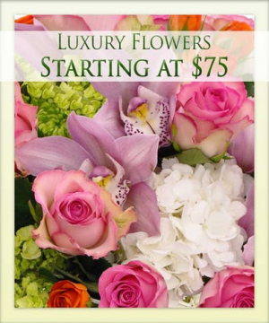 Designers Choice For You! Always Your Best Deal Of The Day With Premium Flowers in Magnolia, TX | ANTIQUE ROSE FLORIST