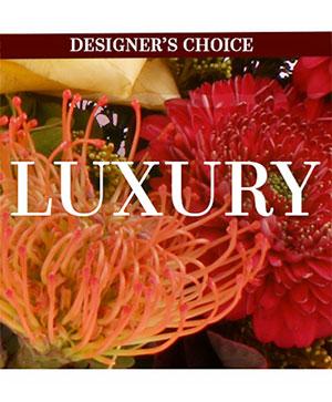 Luxury Florals Designer's Choice in Corpus Christi, TX | Golden Petal Florist