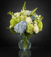 Luxury Hydrangea Arrangement Luxury Arrangement