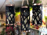 Luxury Lights Indoor/Outdoor