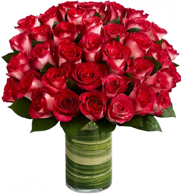 LUXURY  NICOLE ROSES BOUQUET