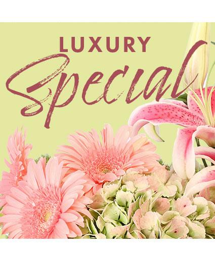 Luxury Special Designer's Choice