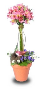 GARDEN TOPIARY of Flowers