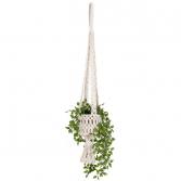 Macrame Woven Basket Hanging Planter Plants