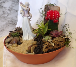 Made for Mom Succulent and Cacti garden in Orleans, ON | SELECT BLOOMS FLORAL BOUTIQUE