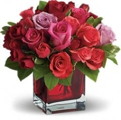 Madly in Love with Red Roses Elegant