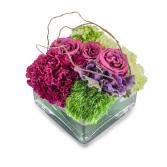 Magenta Gardens Compact Vase Arrangement