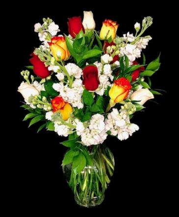 Magic Red & Yellow Roses