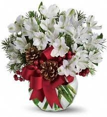 Magical Christmas Holiday Flowers