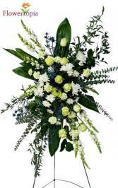 Laguna Azul Corona Funeral