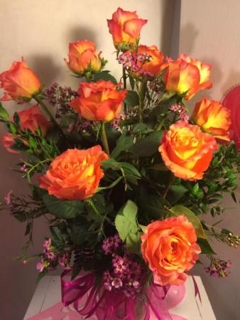 Magnificent Rose rose
