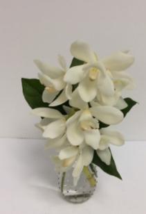 Majestic Orchids budvase