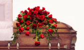 Majestic Tribute Red Rose Half Casket Spray