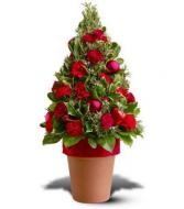 Make Me Smile  Potted Flower Tree