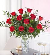 Premium Dz. Roses