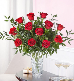 Marquis One Dozen Roses Premium Rose Arrangement in Springfield, MO | FLOWERAMA #226