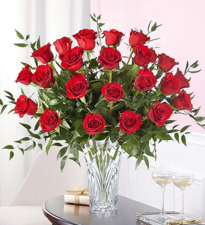 Marquis Two Dozen Red Roses Premium Red Rose Arrangement in Springfield, MO | FLOWERAMA #226
