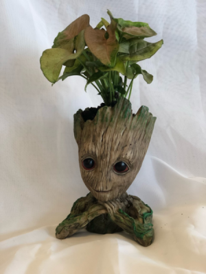 Marvel's Groot Planter   in Virginia Beach, VA | FLOWER LADY