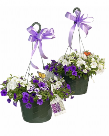 MATCHING HANGING BASKETS FOR MOM GREENHOUSE SPECIAL