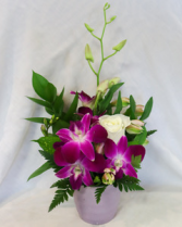 Mauve-a-licious Petite Orchid Arrangement