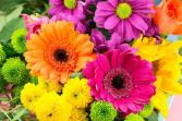 5-30-19 Flower Arranging Class