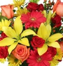 Mayfield Flowers Designers Choice Vase Arrangement in Seasonal Colours